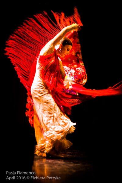 Read more about the article Zapisy na zajęcia Flamenco